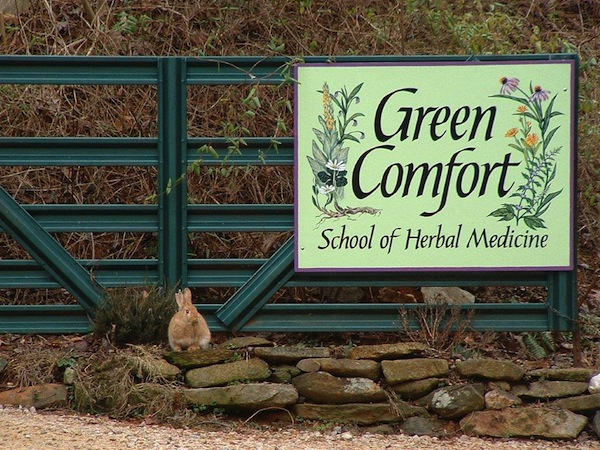 Welcome to Green Comfort